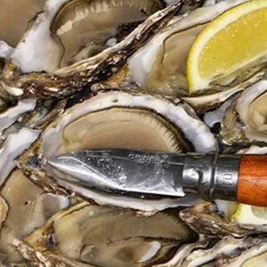 Seafood Knives & Shellfish Tools