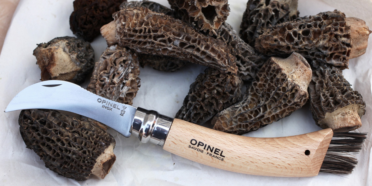 Shop Opinel specialty knives at Country Knives